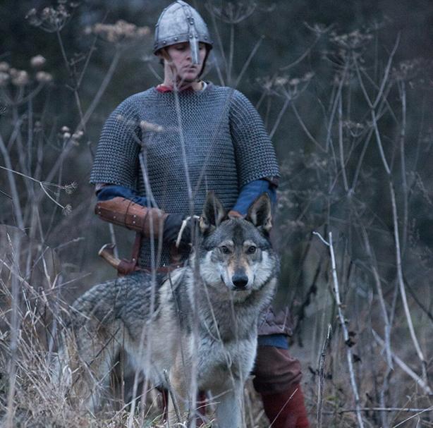 Article Gil visuel viking 7 - Les époques reconstituées